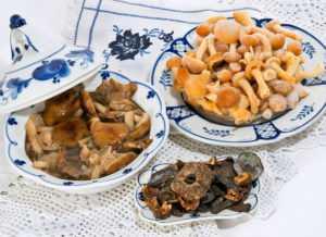 Как заморозить грибы на зиму: сохрани вкус и аромат