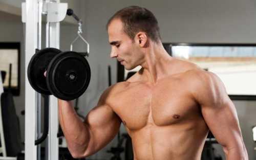 Глутаминовая кислота в спорте